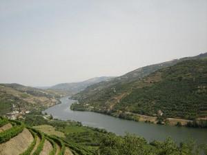 Виноградпики в долине Дору