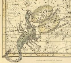 Скорпион и Весы на Звездном атласе А.Джеймсона, 1822 г.