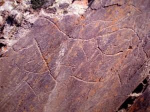 Наскальные изображения долины Коа