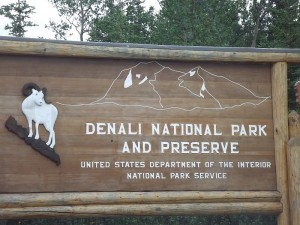 Баран является символом Национального парка Денали